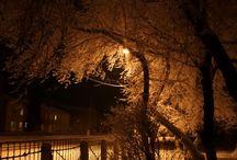 ночные парки