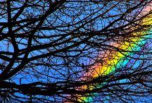 Beutifull Rainbows