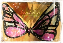Bright-Wing