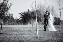 Somerset Wedding venues