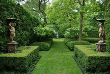 Trädgård & Orangeri 2(Orangery & Garden) / Vackra saker som passar i växthus, orangerier eller i din trädgård. Vackra material för att förhöja det naturliga. http://www.lillaorangeriet.se