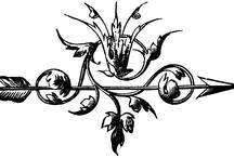 Inspiration: Logos & Branding
