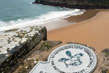 Pembrokeshire, South Wales / Pembrokeshire, South Wales, Wales, UK / by Hayley Rowley