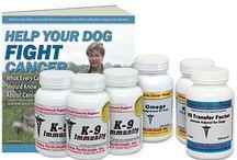 Dog Cancer Care Kits