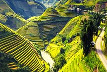 Vietnam Travel / Travel to Vietnam. What to see, food, amazing places to visit in Vietnam!