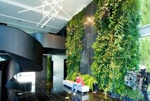 Waterfall Vertical Gardens