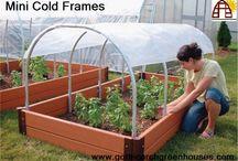 Mini Greeenhouse Cold Frames