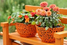 Gardening tips and tricks / Some tips and tricks to brighten your garden