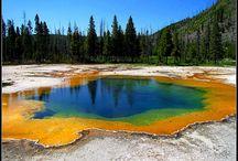 Yellowstone Family Trip / by Brenda Palsma-Teske