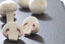 funghi e proprieta' curative