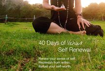 40 Days of Venus Self Renewal / As Venus goes retrograde (appears to travel backward in the skies) for the next 40 days and nights, it's a brilliant time to renew your sense of self, replenish from within and refuel your self-worth. Join me on the #40daysofvenus free adventure. Dec 23, 2013 – Jan 31, 2014.  Join the journey www.facebook.com/jelenamrkich