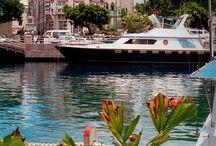 Barbados / Barbados is het Britse Curacao of Aruba. Zon, zee, strand en wat koloniale historie, en dat alles in een vertrouwde atmosfeer. Toerisme is hier de belangrijkste bron van inkomsten en dat merk je overal. Met name de zuid- en westkust staat vol met hotels, restaurants en souvenirwinkels. Het is hier dan ook het hele jaar aangenaam vertoeven.