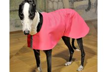Clothes for Greyhounds