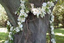 Troelsbröllop