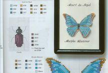Kreuzstich (Schmetterlinge)