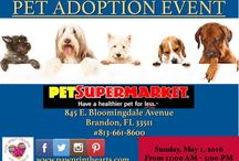 ADOPTION EVENTS / Please check out our upcoming adoption events.