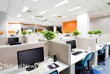 Office Interior and Fitouts / Get the ideas of making your workplace beautiful with these ideas.