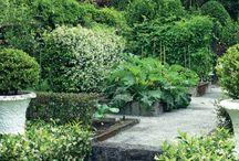 Ideas para mí jardin