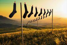 The Black Socks Movements