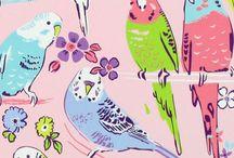 Uccellini&farfalle