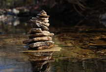 Andy Goldsworthy / by Michelle @ Delicate Construction