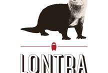 Lontra Bodysurf / Prancha de mão e artigos para surf de peito - Handplanes and bodysurf equipment / by Douglas Salles