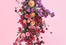 FLORISTS   The Planthunter Directory / Florists we love!