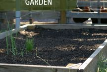 Vegetable Fertilizers / What to use and how to make organic garden fertilizers and soil amendments.