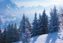 Get the Feeling Of: Adelboden / Adelboden is a beautiful and buzzing Alpine village located in the West-Oberland region of Switzerland. Home to one of the Audi Ski World Cup fixtures, its reputation for great skiing can't be beaten.