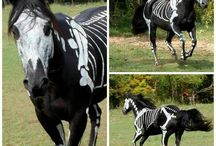 Halloween for horse lovers