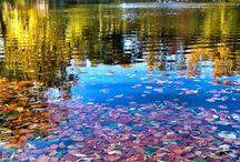 Gdańsk Jesienią Poland Autumn City The Art Photo Beautiful Nature Gdansk / Oblicza miasta Gdańska w okresie pięknej pory jesiennej
