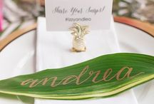 Wedding - Project Tropical