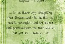 Unglued by Lysa Terkeurst (MT Bible Studies)