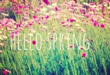 Spring has sprung / So spring