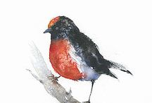 red robin bird watercolor painting prints, original bird watercolor print, robin watercolor print / Red robin watercolor print from my original watercolor painting, a great wall hanging home decor watercolor bird art which would bring pleasant emotional reaction within you. Birds are real source of compassion, love and unity and it certainly brings happy environment around your home. My watercolour Robin bird print has got unique visual treatment and abstract watercolor flow.