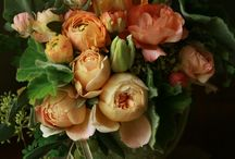 flowers / color, texture and design