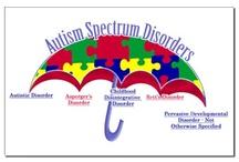 Autism Awareness / by Rose Lerner