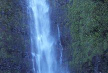 L'Océan Indien / La Réunion, Île Maurice, Seychelles, Rodrigue...