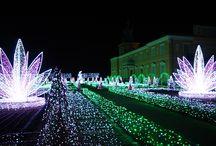Magiczny Ogród Króla przy Pałacu w Wilanowie