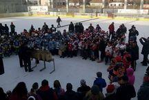 The future of hockey / romania hockey, hochei, brasov, corona wolves, wolf cubs