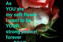 YOU are my flower my DEAR