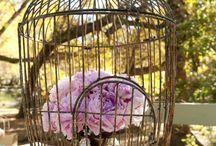 ♡ Gabbiette shabby ♡ Bird Cages ♡ / wedding allestimenti