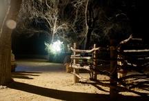 El Pessebre del Riu / Recull d'imatges de les escenes del Pessebre del Riu, al parc municipal de Tivenys