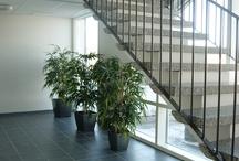 Julkiset tilat / Public Spaces / roomdsign.fi