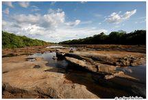 Parc Haut Niger