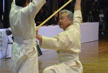 martial arts -jodo