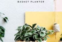 How to Weave a Basket Planter