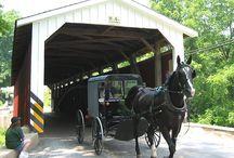 Amish Life / by Nancy Kinnaird