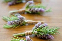Boutonnieres / wedding flowers, wedding florals, boutonnieres, groomsmen, wedding accessories, wedding style, wedding inspiration