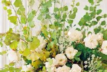 {10.3.15} INSPIRATION / Wedding color scheme: amber/gold, chocolate brown, dark purple, green, dusty(antique) pinks White roses, freesia, peonies, hydrangea, lamb ear, fern, evergreen (blue) berries and dusty roses